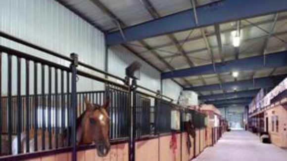 Metal ropes together distribution business, horse hobby: A veterinary supply company and an equestrian facility were brought together with a wide-span structural system